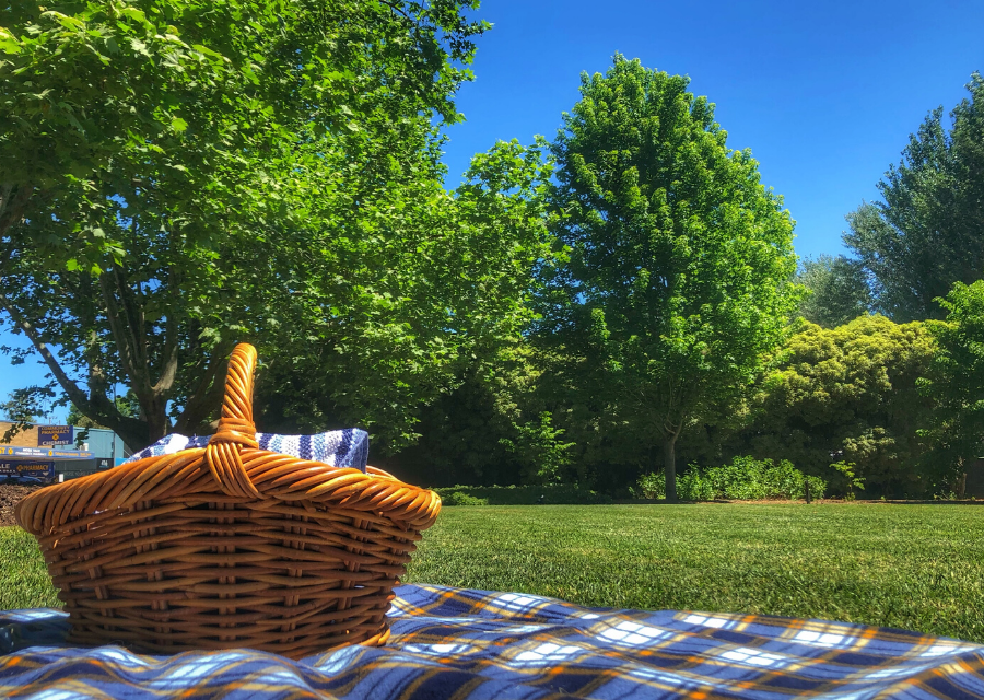7 Fabulous Picnic Spots in the Southern Highlands