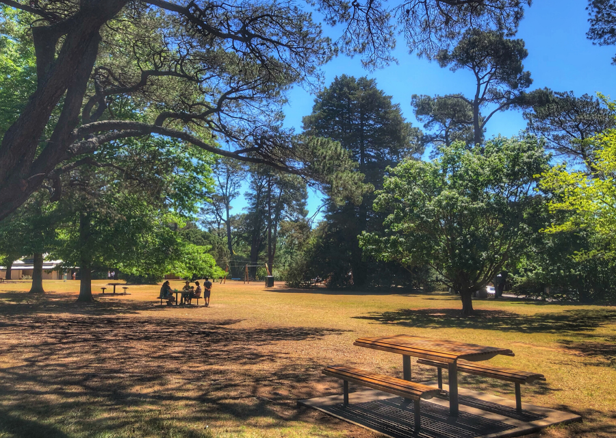Berrima Market Place Playground and Picnic Spots