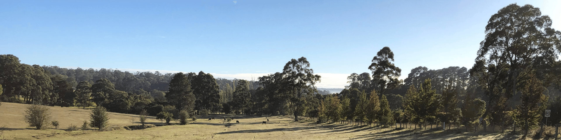 Southern Highlands Weather