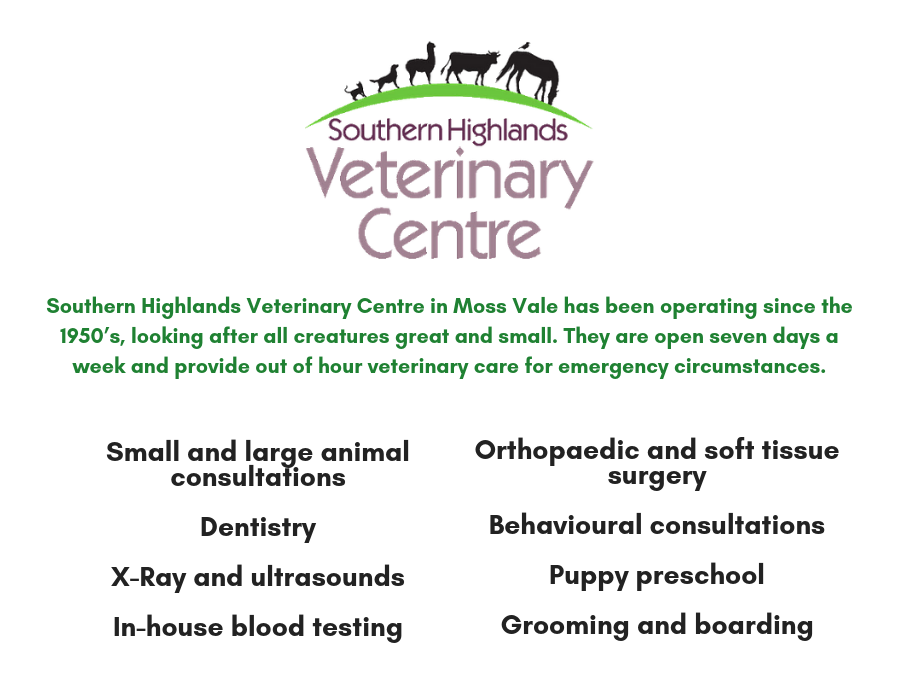Southern Highlands Vets