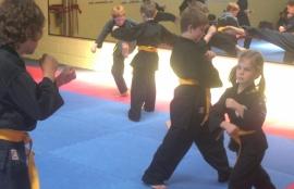 Ta Mo Tao Martial Arts