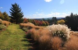 Southern Highlands Botanic Gardens
