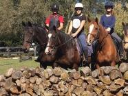 Fitzroy Equestrian Centre