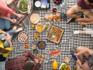 7 Fab Picnic Spots in the Southern Highlands