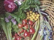 In The Garden: Creating a Kitchen Garden