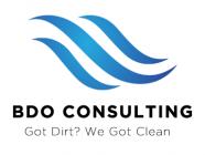 BDO Consulting