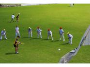 Bradman Cricket Clinic