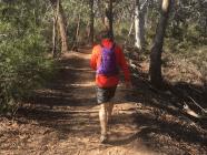 EXPLORE // 5 Southern Highlands Bushwalks For Fitness Fans