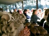 Fungi Feast Degustation at The Loch Berrima